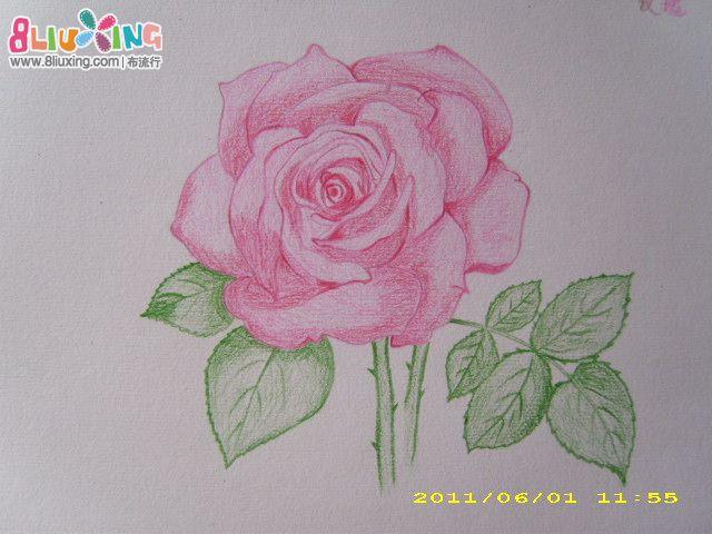 铅笔手绘玫瑰花图片,手绘玫瑰花黑白画图片