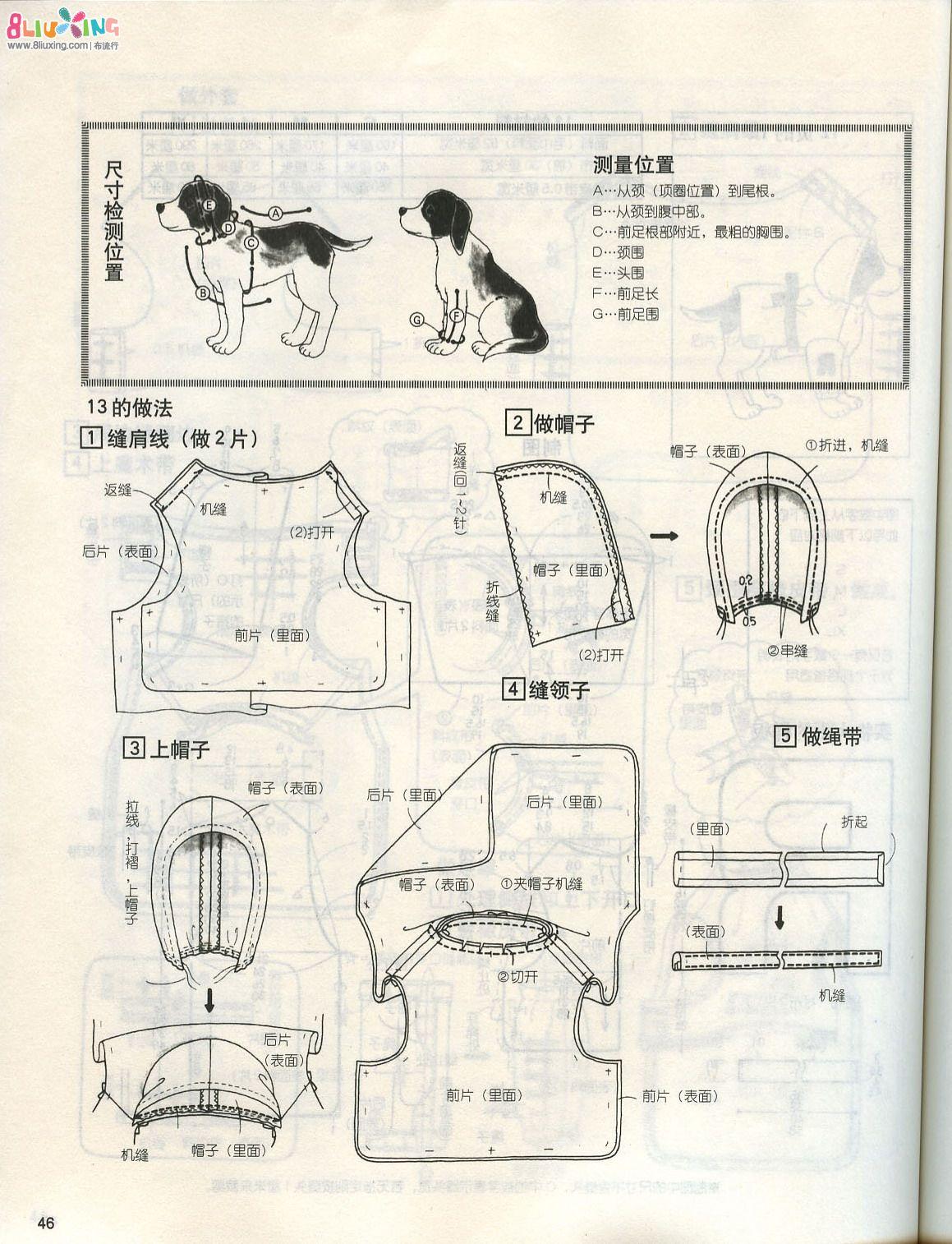 寵物服裝設計圖紙【相關詞_ 寵物服裝設計圖】