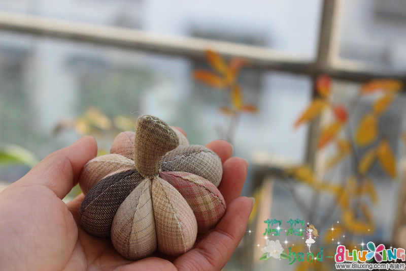 秋季柿子包