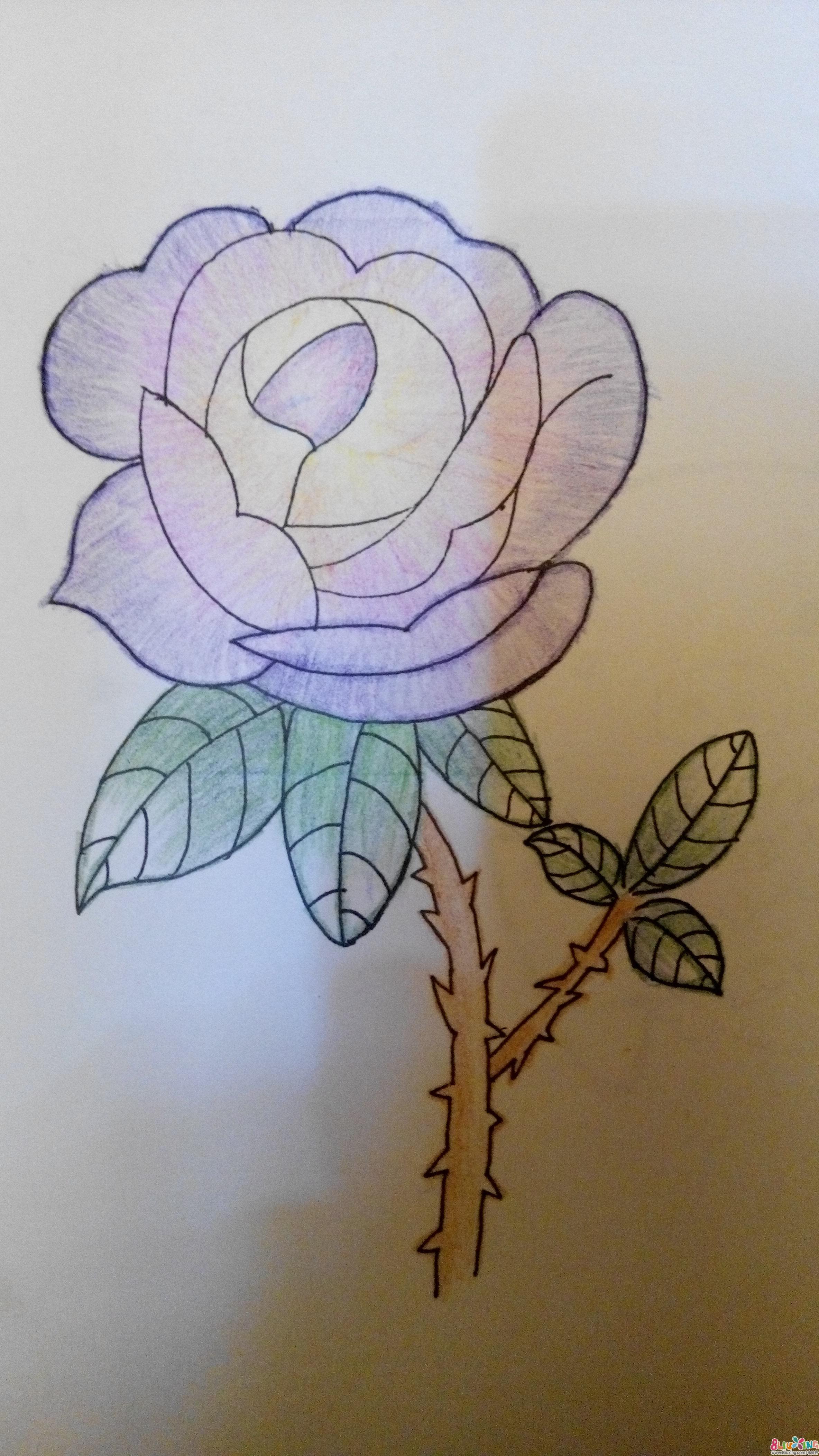 手绘玫瑰花简笔画_手绘玫瑰花简笔画画法