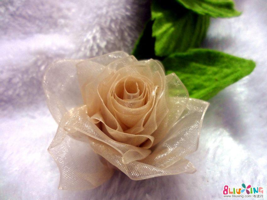 原创手工花欣赏——蔷薇一花两色浅深红