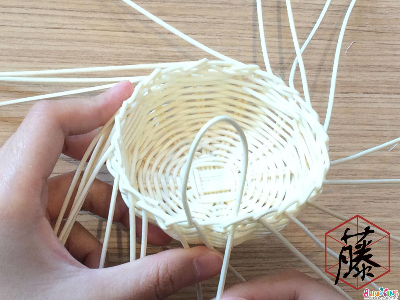 最后一条主枝穿插到第一条主枝中,形成一个完整的循环。