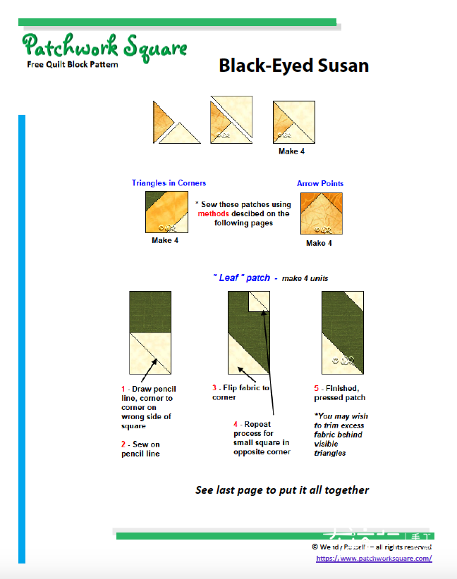Blacked-Eyed-Susan4.png