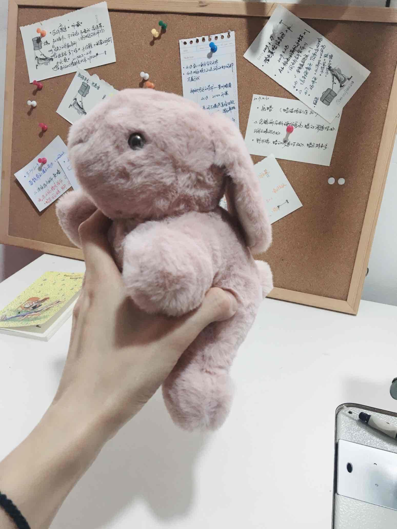 兔几——娃三打卡